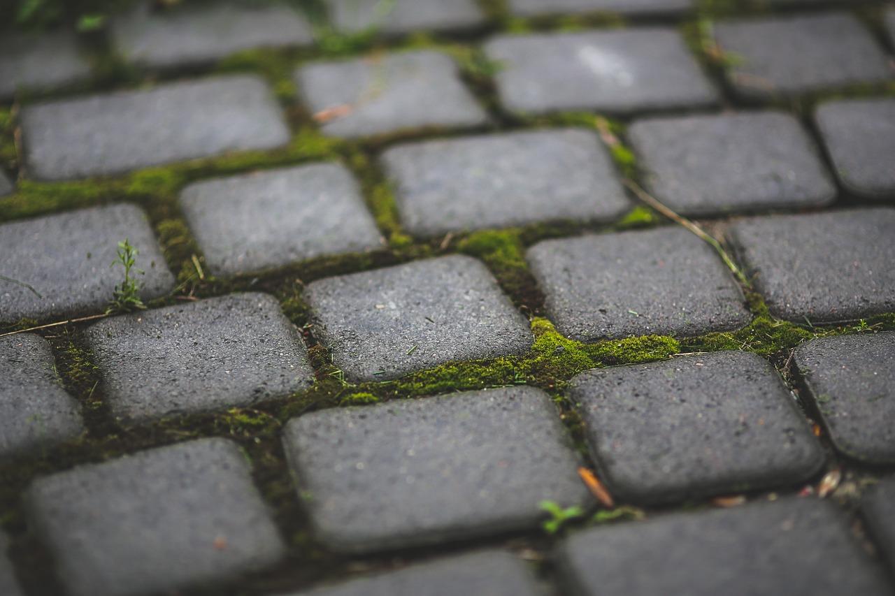 Kostka przed domem. Układanie kostki Warszawa – kostka brukowa betonowa